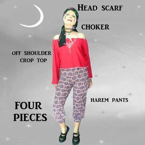 Harem Pants, Off Shoulder Top, Choker, Headscarf, Size Small Casual Outfit
